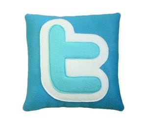 Twitter Pillow by Craftsquatch