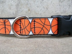 dog collar basketball